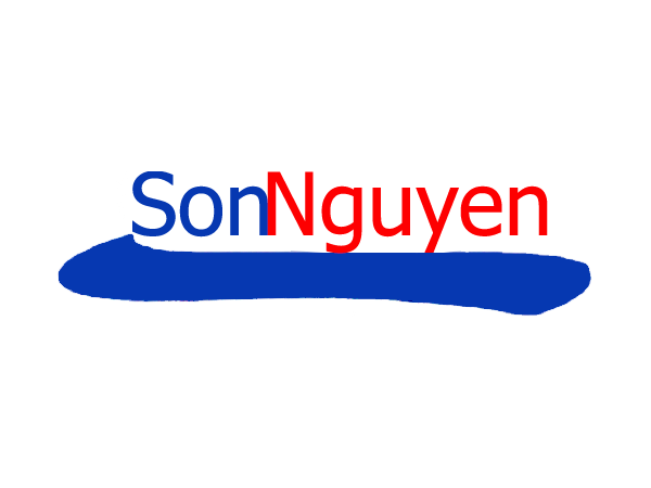 Vina System implementation SAP Business One for SonNguyen Auto
