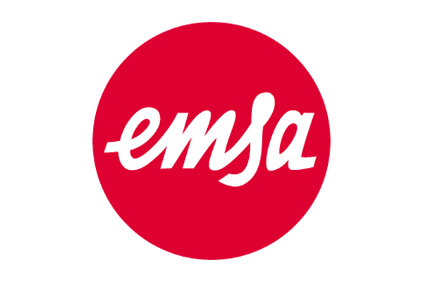 Vina System has implemented  SAP Business One for EMSA VIET NAM CO., LTD