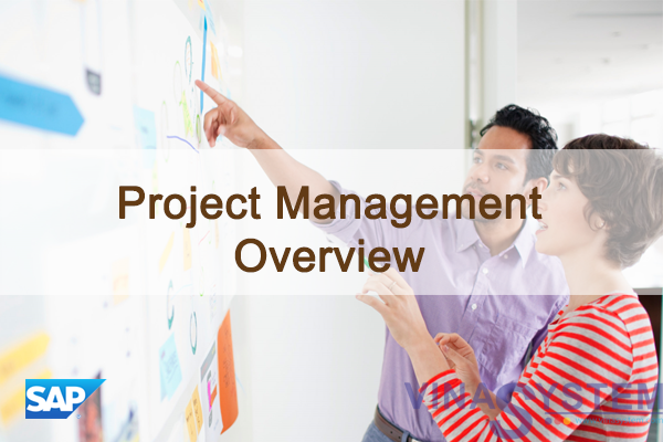 Project Management in SAP Business One - Project Management Overview
