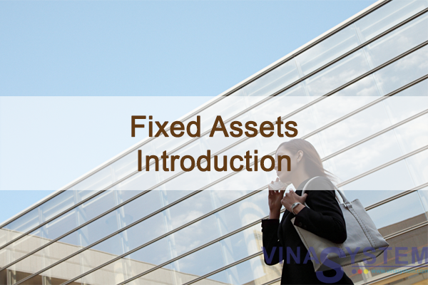 Fixed Assets in SAP Business One - Introduction