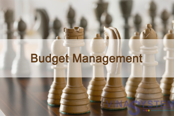 Budget Management in SAP Business One