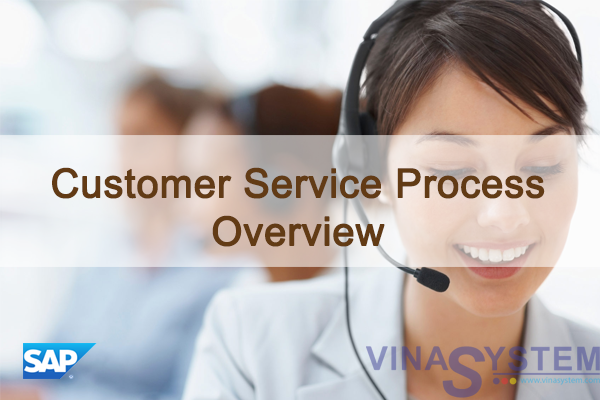 Customer Service Process in SAP Business One - Customer Service Process Overview
