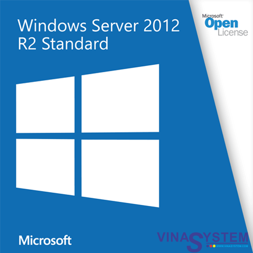 Microsoft Windows Server Vina System